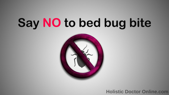 Bed Bug Bites Holistic Doctor Online